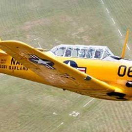 30 Minute Aerobatic Harvard Flight in Berkshire
