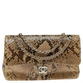 Chanel Beige Python Leather Classic Flap Shoulder Bag