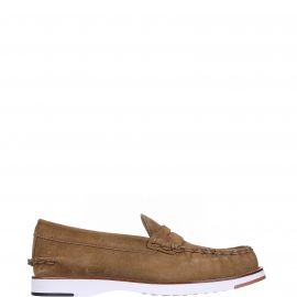 Tods Loafer In Bronzw Suede